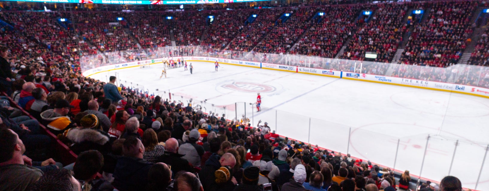 Seat view from Red Goal