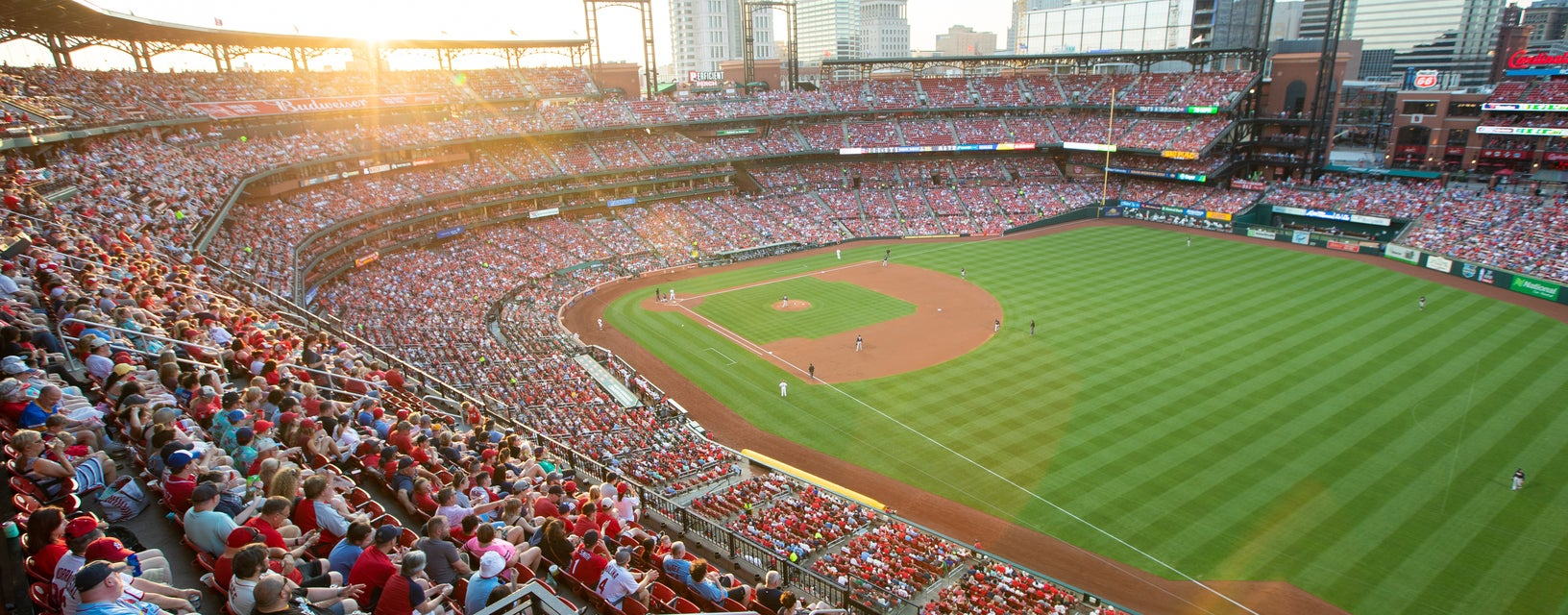 Seat view from Right Field Terrace
